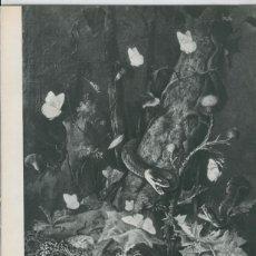 Coleccionismo: LES ANIMAUX UN GRAND THEME DE L,ART: LAMINA 39. Lote 95833962