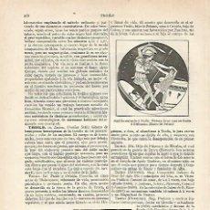 Coleccionismo: LAMINA ESPASA 20485: TROILO Y AQUILES. Lote 96922606