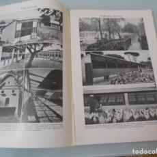 Coleccionismo: CRÍA DE GALLINAS - 15 PÁGINAS TEXTOS Y LAMINAS Nº 60.426 PROCEDE DE LIBRO + 70 AÑOS. Lote 98189579