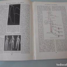 Coleccionismo: LA POSTURA Y LA MARCHA - 8 PÁGINAS TEXTOS Y LAMINAS Nº 60.431 PROCEDE DE LIBRO + 70 AÑOS . Lote 98191875