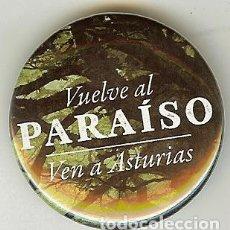 Coleccionismo: CHAPA DE ALFILER - ASTURIAS. Lote 110919003