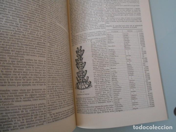 Coleccionismo: *.- LÁMINA ESPASA T-286 - VINIFICACIÓN (55 PÁGINAS ENTRE TEXTOS E ILUSTRACIONES - !MUY INTERESANTE! - Foto 5 - 114380903