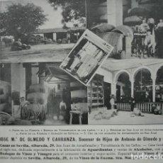 Coleccionismo: BODEGAS JOSE MARIA DE OLMEDO Y CARRANZA TORREBLANCA SAN JUAN DE AZNALFARACHE SEVILLA .AÑO 1910.17X12. Lote 115772507
