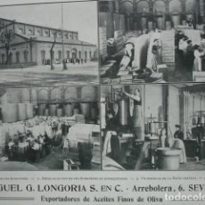 Coleccionismo: ACEITES MIGUEL G LONGORIA ARREBOLERA SEVILLA .AÑO 1910.17X12. Lote 115772863
