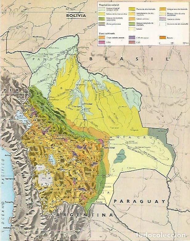 LAMINA LAROUSSE 70313: MAPA DE BOLIVIA (Coleccionismo - Laminas, Programas y Otros Documentos)