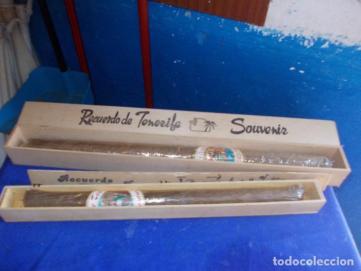 Coleccionismo: puro grande de canarias - Foto 3 - 128332431