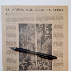 Coleccionismo: EL ÁRBOL QUE CURA LA LEPRA. Y OTRS ARTICULOS. 1922. Lote 139915504
