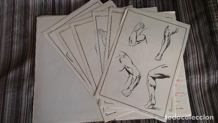 Coleccionismo: E. FREIXAS LÁMINAS LECCIONES DE DIBUJO ARTÍSTICO SERIE 10 COMPLETA - Foto 2 - 146606830