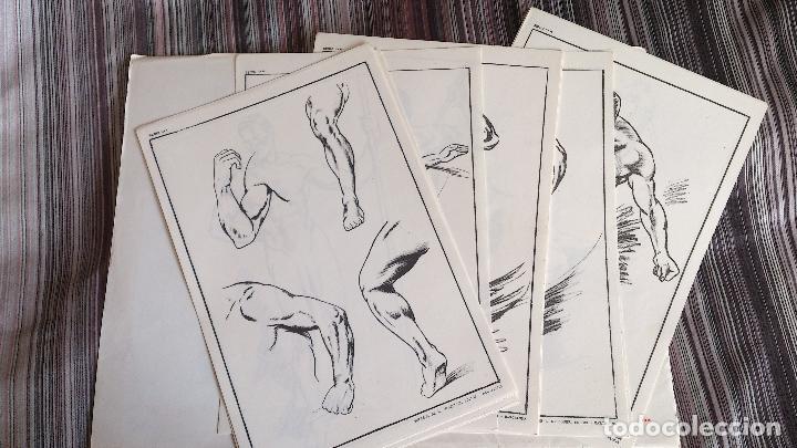 Coleccionismo: E. FREIXAS LÁMINAS LECCIONES DE DIBUJO ARTÍSTICO SERIE 10 COMPLETA - Foto 2 - 146607006
