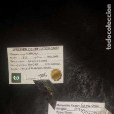 Coleccionismo: COLECCION DE 5 METEORITOS AUTÉNTICOS METALICOS. Lote 147643598