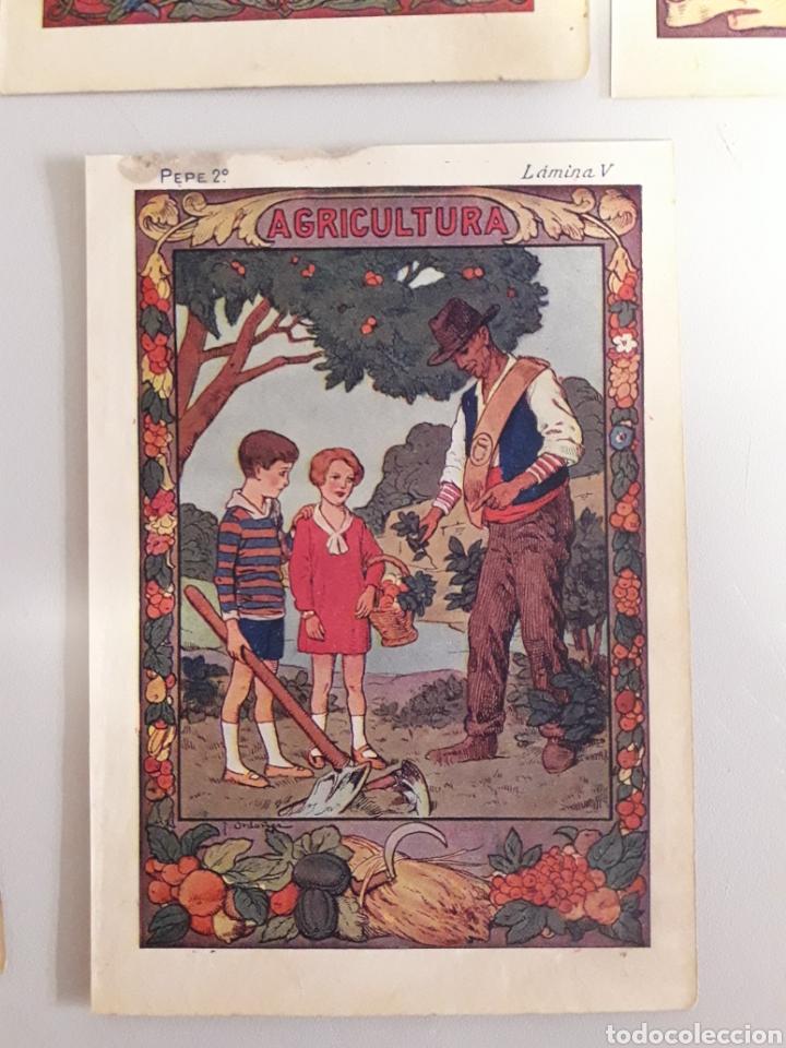 Coleccionismo: LOTE DE 7 ANTIGUAS LÁMINAS DE COLEGIO. - Foto 6 - 194527847