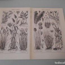 Coleccionismo: LÁMINA ESPASA - DOBLE LÁMINA TURBERA. Lote 154415158