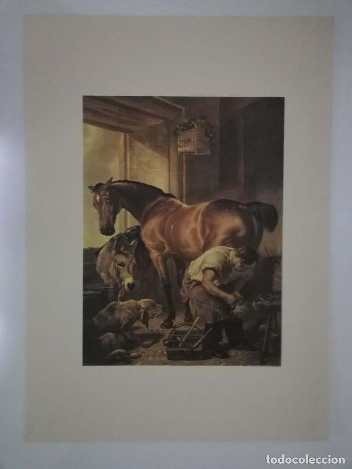 Coleccionismo: 6 Laminas 44X33 Galerias Apollo de Bruxelles. Ediciones de Arte - Foto 7 - 155964622