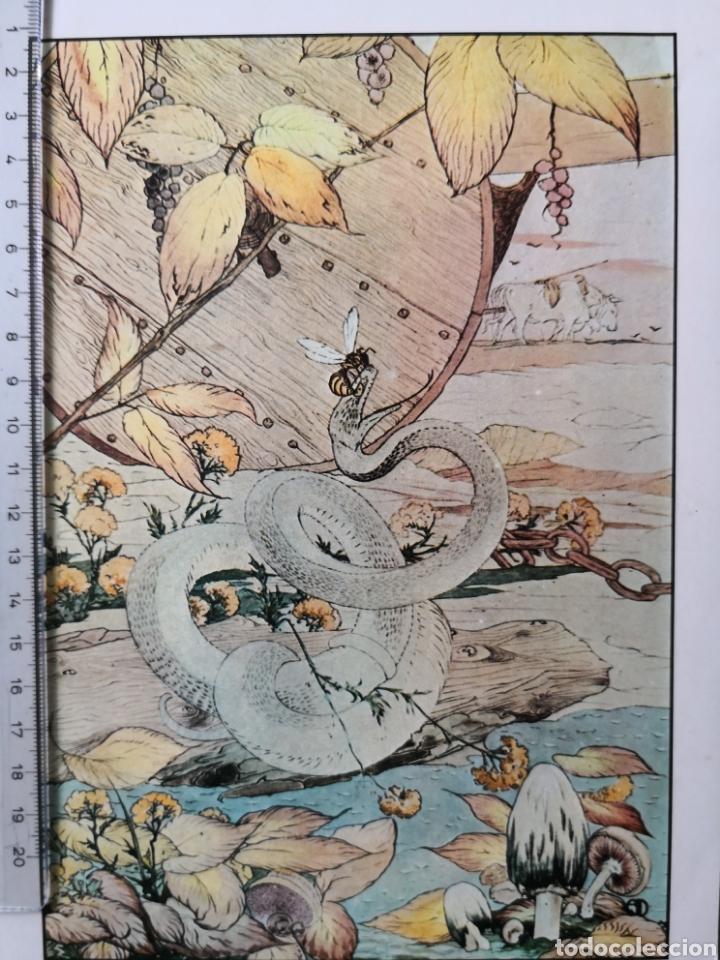 Coleccionismo: Lote de 6 láminas Antiguas. - Foto 7 - 157928769