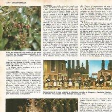 Coleccionismo: LAMINA MONITOR 0786: ESCENA DE EL BARBERILLO DE LAVAPIES Y DE GIGANTES Y CABEZUDOS. Lote 161397605