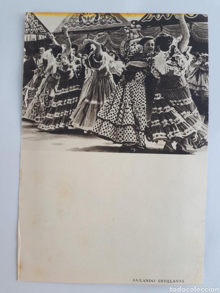 Coleccionismo: AMAZONAS EN LA FERIA DE SEVILLA / FERIA DE ABRIL EN SEVILLA / BAILANDO SEVILLANAS. 1952 - Foto 2 - 162570744