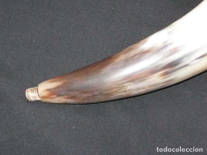 Coleccionismo: Cuerno. 46cm. - Foto 2 - 166604926