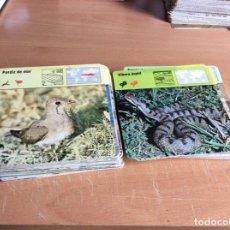 Coleccionismo: FICHAS SAFARI CLUB #182 FICHAS DE ANIMALES#. Lote 169078104