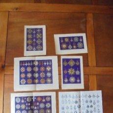 Coleccionismo: LÁMINAS DE 1925. ESPAÑA: CONDECORACIONES I, II, III, IV, V Y VI. Lote 169433108