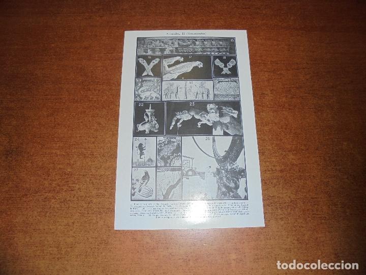 Coleccionismo: ANTIGUA LÁMINA: ANIMALES (ORNAMENTOS) I Y II - Foto 2 - 171639789