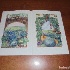 Coleccionismo: LÁMINA DE 1922: HORTALIZAS. Lote 172969829