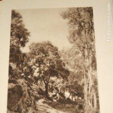 Collectionnisme: LLUCH MALLORCA GORG BLAU ANTIGUA LAMINA HUECOGRABADO 1929. Lote 175463930