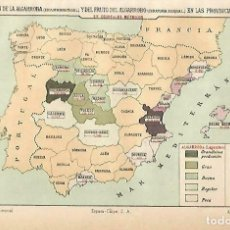 Coleccionismo: LAMINA ESPASA 33756: MAPA DE ESPAÑA DE PRODUCCION DE ALGARROBA. Lote 180146391
