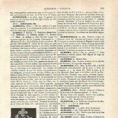 Coleccionismo: LAMINA ESPASA 33770: ALHELI. Lote 180146576