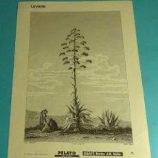 Coleccionismo: LÁMINA PITERAS. GRABADO DE LABORDE. EL REINO DE VALENCIA. Lote 180262283