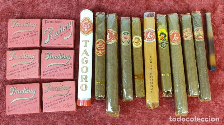COLECCIÓN DE 9 CIGARROS PUROS. 6 PAQUETES DE PAPEL DE FUMAR Y UNA BOQUILLA. SIGLO XX. (Coleccionismo - Objetos para Fumar - Otros)