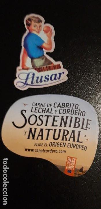 2 IMANES DE FRIGO DE ** LLUSAR Y CANAL CORDERO ** (Coleccionismo - Varios)