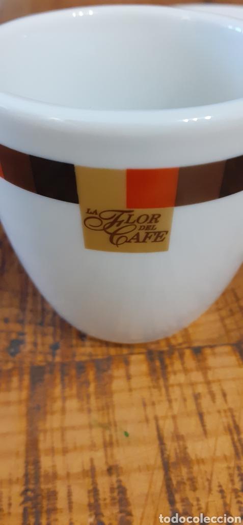TAZA Y PLATO- CORTADO CAFE - CUP & SAUCER PORTUGAL (Coleccionismo - Varios)