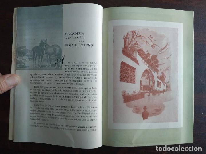 Coleccionismo: Feria de Otoño y XXV aniversario fundación de la confederación hidrográfica del Ebro en Lleida 1951 - Foto 13 - 194513031