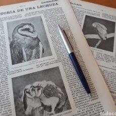 Coleccionismo: LAS NOTAS MUSICALES MÁS ALTAS DEL MUNDO / HISTORIA DE LA LECHUZA. 1906. Lote 194587242