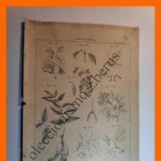 Coleccionismo: LÁMINA - AGRICULTURA - EDITORES J. ROMÁ. Lote 195188175