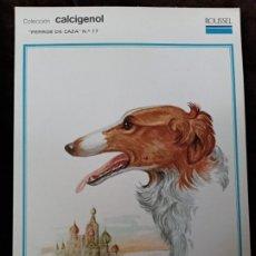 Coleccionismo: LÁMINA / PERROS DE CAZA. PUBLICIDAD AL DORSO. AÑO 1974.. Lote 195976513