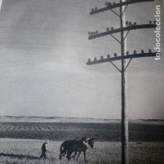 Coleccionismo: ESQUIVIAS TOLEDO LABRADOR ARANDO ANTIGUA LAMINA HUECOGRABADO AÑOS 50. Lote 205602590