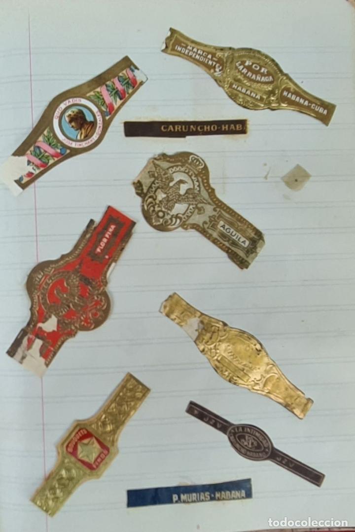 Coleccionismo: COLECCION DE 156 VITOLAS DE TABACO. VARIAS MARCAS. LA HABANA. CUBA. SIGLO XX. - Foto 2 - 213859311