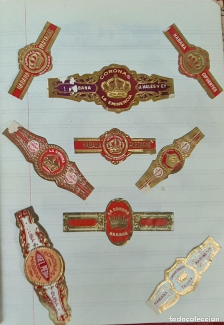 Coleccionismo: COLECCION DE 156 VITOLAS DE TABACO. VARIAS MARCAS. LA HABANA. CUBA. SIGLO XX. - Foto 5 - 213859311