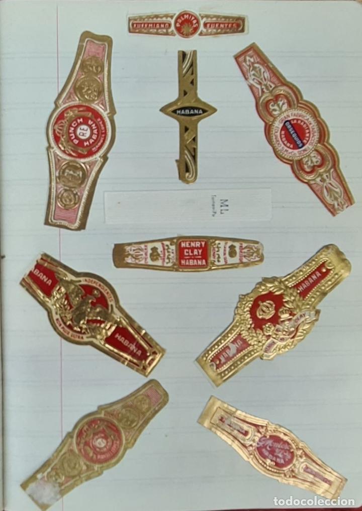 Coleccionismo: COLECCION DE 156 VITOLAS DE TABACO. VARIAS MARCAS. LA HABANA. CUBA. SIGLO XX. - Foto 7 - 213859311