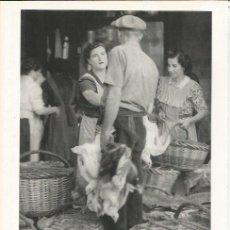 Coleccionismo: LAMINA 21592: MERCADO DE ANIMALES DE GRANOLLERS. Lote 218817641