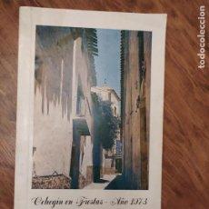 Collezionismo: JML PROGRAMA DE FIESTAS CEHEGIN EN FIESTAS AÑO 1973 MURCIA. VER FOTOS.. Lote 227734504