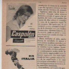 Coleccionismo: ANUNCIO PUBLICIDAD CHAMPU CASPOLEN-ADELGAZANTE CARRUGAN. Lote 236789680