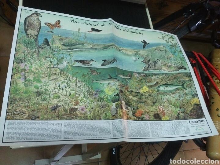 Coleccionismo: 12 láminas coleccionables flora y fauna Comunidad Valenciana - Foto 2 - 243606615