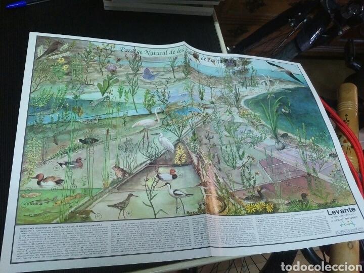 Coleccionismo: 12 láminas coleccionables flora y fauna Comunidad Valenciana - Foto 5 - 243606615