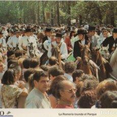 Coleccionismo: LAMINA DIARIO COSTA DEL SOL. LA ROMERIA INUNDA EL PARQUE. FOTO P. PONCE 31,8X21,8 CM. LAMAL-007. Lote 245176530
