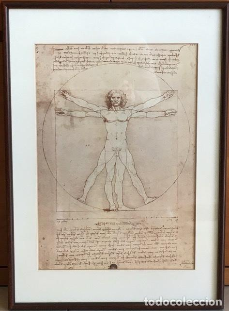 POSTER DEL ICONIC VITRUVIAN MAN DE LEONARDO (Coleccionismo - Laminas, Programas y Otros Documentos)