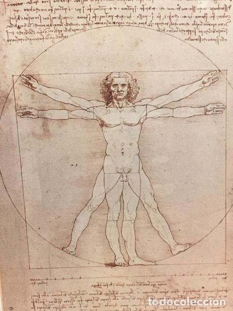 Coleccionismo: Poster del Iconic Vitruvian Man de Leonardo - Foto 2 - 261284905