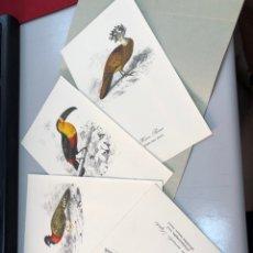 Coleccionismo: ANTIGUO LOTE 4 LÁMINAS DE PÁJAROS EN CARPETA READER'S DIGEST - AVES. Lote 277601743