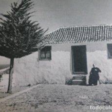 Coleccionismo: FASNIA TENERIFE ANTIGUA LAMINA HUECOGRABADO. Lote 294998533